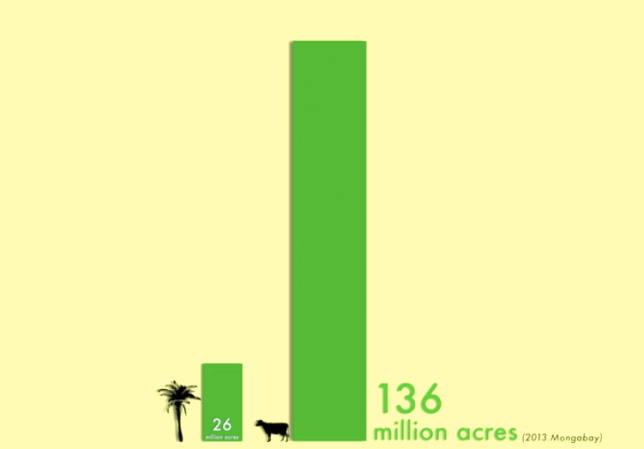 Deforestation caused by palm oil vs deforestation caused by the cattle industry, according to Cowspiracy